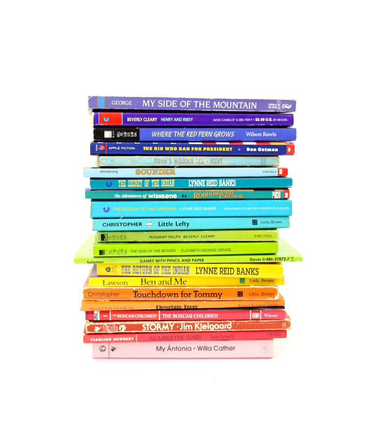 a-stack-of-books-organized-in-rainbow-order_t20_EOQJN1